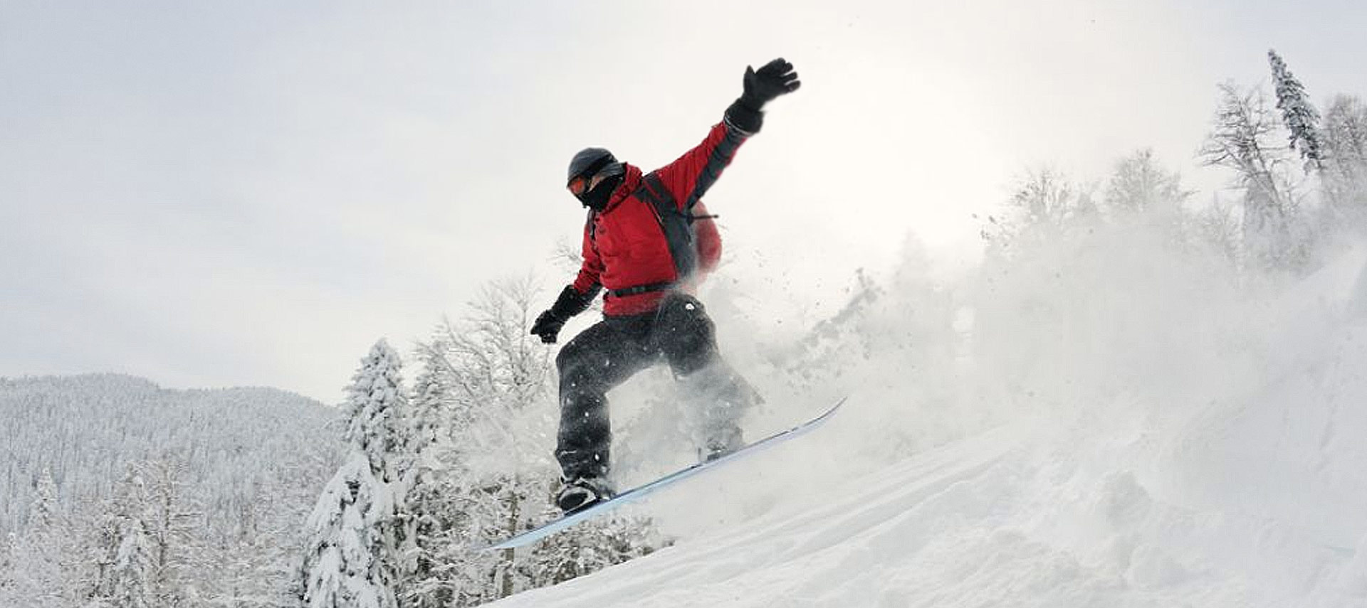 The Success of Metro Ski Parks